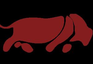 icone-carne-boi-senepol